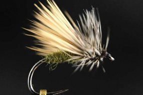 Paul Shurtleff PFC Paulies Fluttering Caddis Fly Tying Guide