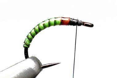 Roy Ole Læhren Jakobsen Testing Perfect Quills